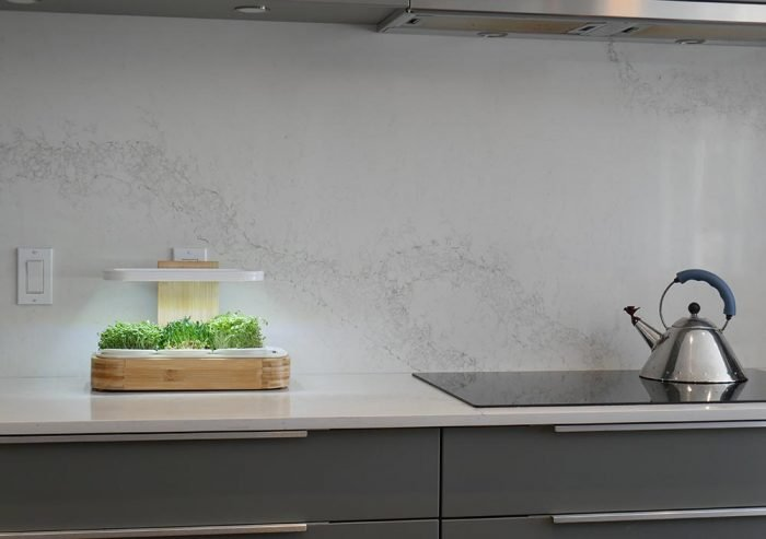 Le jardin novagrow est sur un comptoir de cuisine moderne. On y voit aussi une bouilloire chromée qui est sur le four