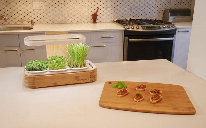 Image du jardin novagrow 1 etage sur un comptoir avec des entrées de bruschettas à côté