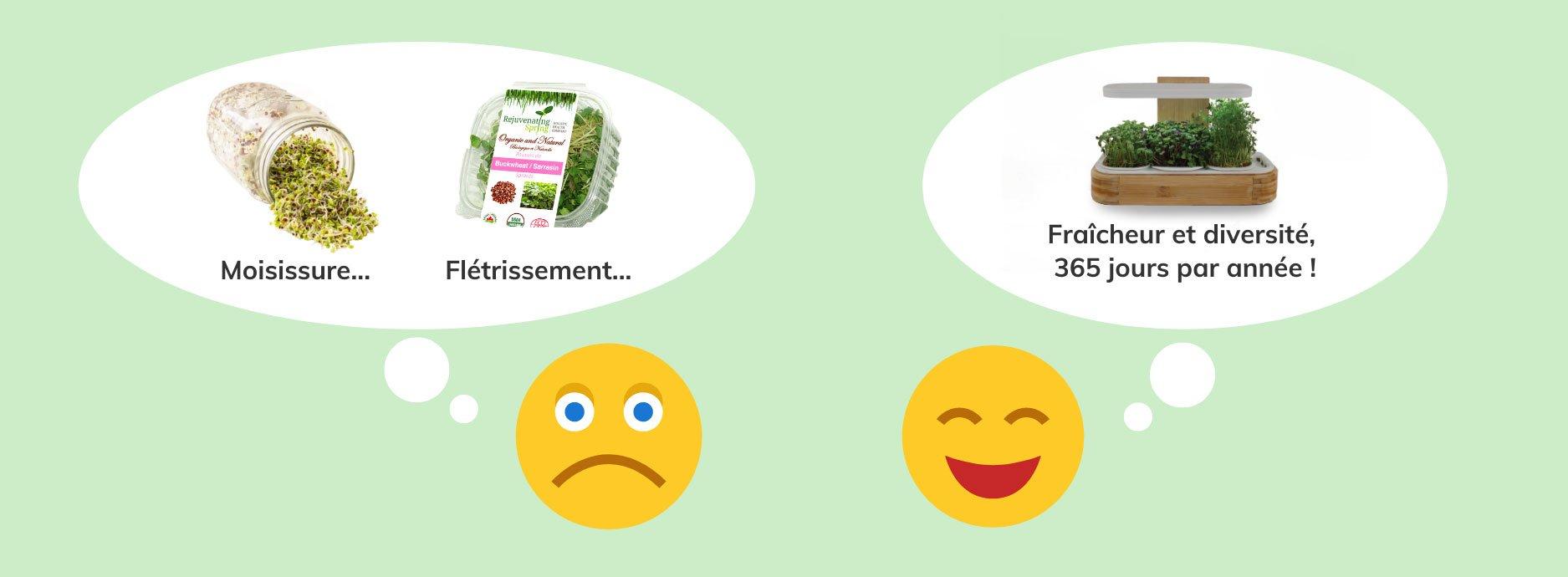 Bonhomme sourire déçu en pensant à la culture de germinations (problèmes de moisissure) en pot vs. bonhomme sourire content qui pense à culture novagrow (fraicheur inégalée