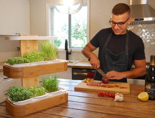 La vraie valeur des jardins novagrow – Partie 2