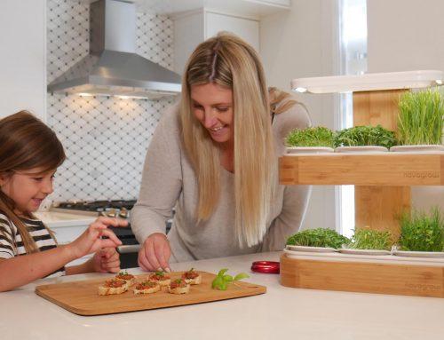 Cultiver des végétaux à la maison toute l'année (même l'hiver)
